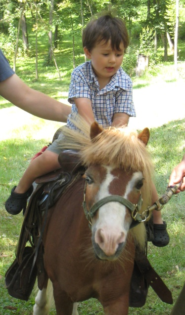 50 cent pony ride was definitely worth the cost!